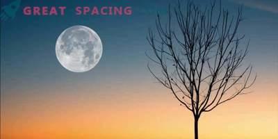 Kaj lahko pričakujete od polne lune 19. april 2019