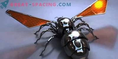 Lahko pošljejo čebele na Mars