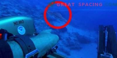 Außerirdisches Schiff in die Falle des Bermuda-Dreiecks geraten?