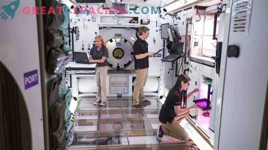 Lockheed Martin gradi prototipno lunarno bazo