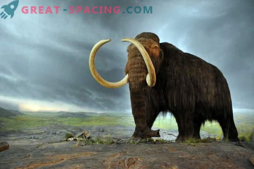 Bi lahko komet uničil megafaun pred 10.000 leti