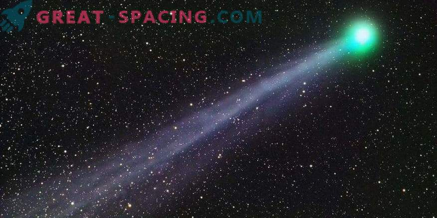 Opozorilni rep kometa Swift-Tattle