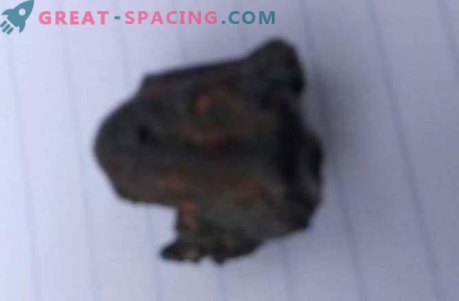 Meteorit ni ubil osebe v Indiji