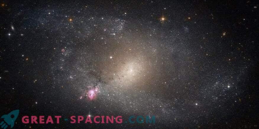 Zvezdne utripa v NGC 5398